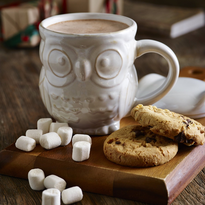 Lovely White Ceramic Mug With Cute Owl Shaped Design Owl
